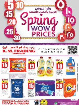 الربيع بأفضل الأسعار – دبي