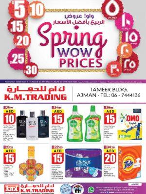 الربيع بأفضل الأسعار – عجمان