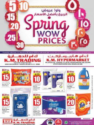 الربيع بأفضل الأسعار – مصفح